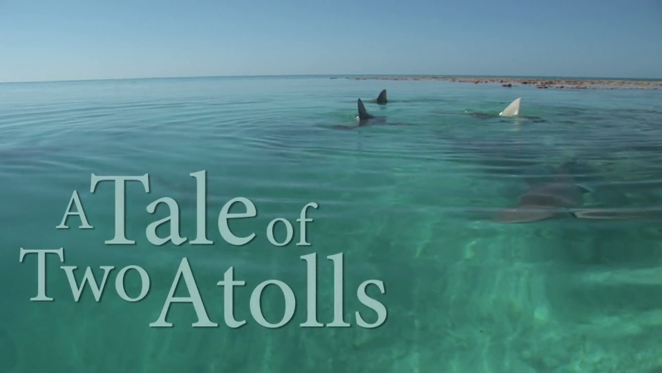 A Tale of Two Atolls