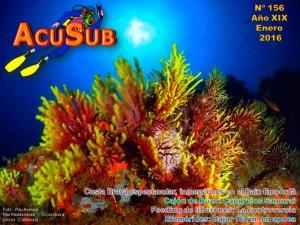 AcuSub-Portada-156