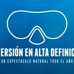 Diving in HD: Buceo en Canarias