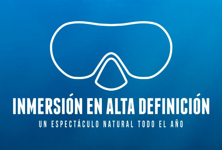 DivingInHD-portada