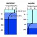 ¿Qué son las termoclinas?